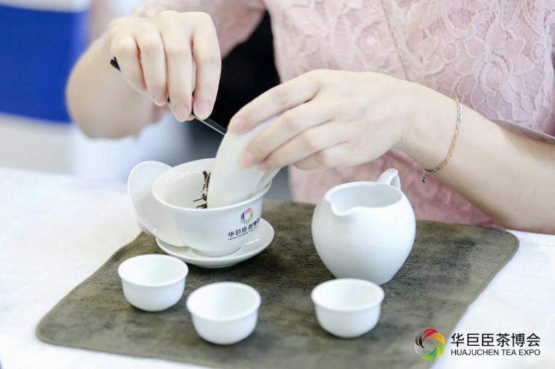 直击——华巨臣第9届重庆茶博会新闻发布会